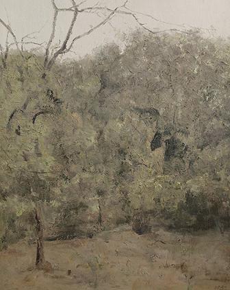 中国风景油画大师张冬峰表示